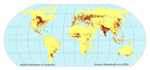 global map of cropland