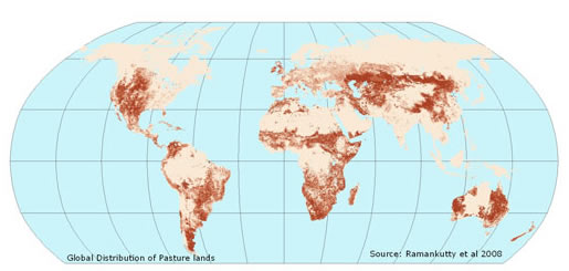 global map of pasture lands