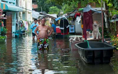 Bangkok, Thailand - November 4, 2011: Man with his family and dogs overlooking flooded street of Bangkok. Unusual heavy rains in July 2011 combined with high tides of the sea triggered massive flooding in Thailand. Approximately one third of all provinces are affected.
