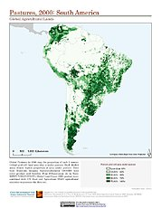 Map: Pastures (2000): South America