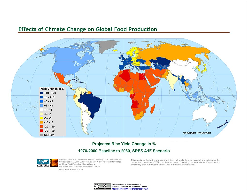 world food production Farmers who produce organic foods use renewable resources that conserve the  soil and water for future generations and any company that handled or.