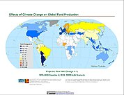Map: Projected % Change in Rice Yield, SRES A2A (2020)