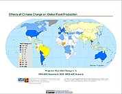 Map: Projected % Change in Rice Yield, SRES A2C (2020)