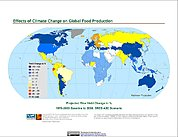 Map: Projected % Change in Rice Yield, SRES A2C (2050)