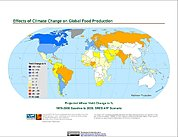 Map: Projected % Change in Wheat Yield, SRES A1F (2020)