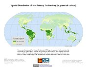 Map: Spatial Distribution of Net Primary Productivity