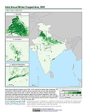 Map: India Winter Cropped Area, 2001