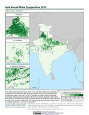 Map: India Winter Cropped Area, 2016