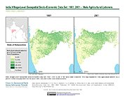 Map: India Male Agricultural Laborers (1991, 2001): State of Maharashtra