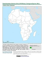Map: Amphibian Richness - Endangered, 2015: Africa